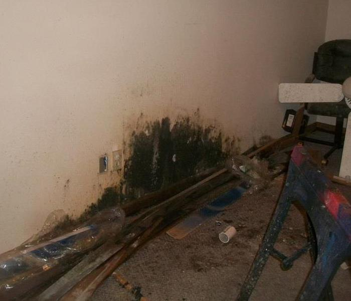Mold in Basement of Home in Rochester, NY Before
