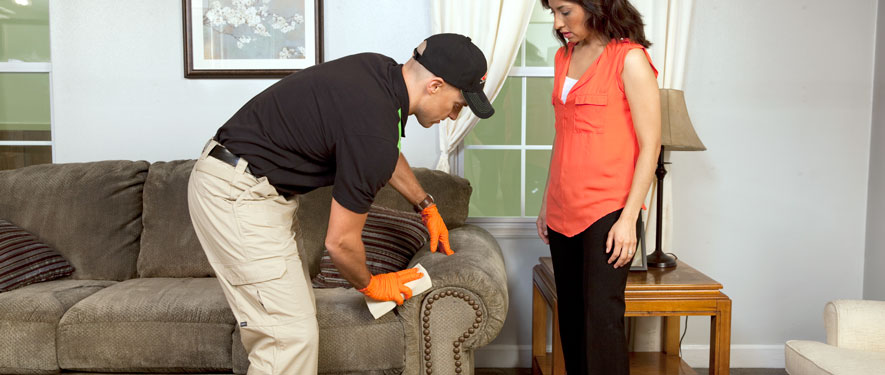Rochester, NY carpet upholstery cleaning